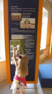Museo dell'Arte della Lana - Toskana