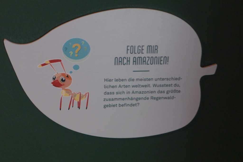 Eine kleine Ameise führt durch die Regenwald-Ausstellung, d.h. Beschriftungen für Kinder in einfacher Sprache an ausgewählten Stationen.