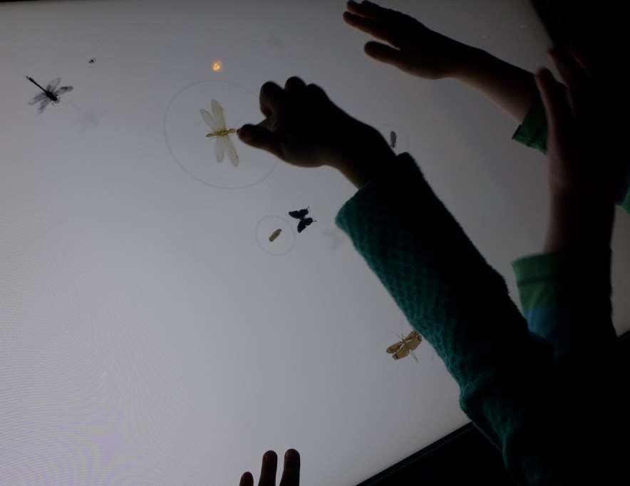 Erleuchteter Touchscreen auf dem Insekten erscheinen, die weggedrückt werden können. Ein Riesenspaß für die Kids.