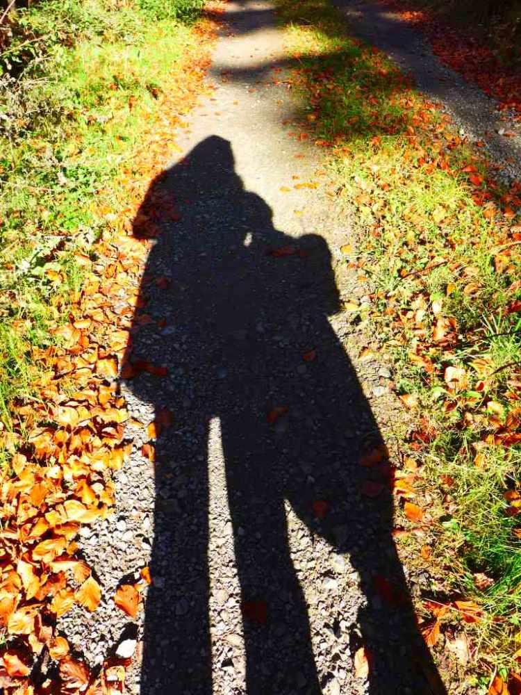 Schattenbild von Mutter und Tochter im Wald