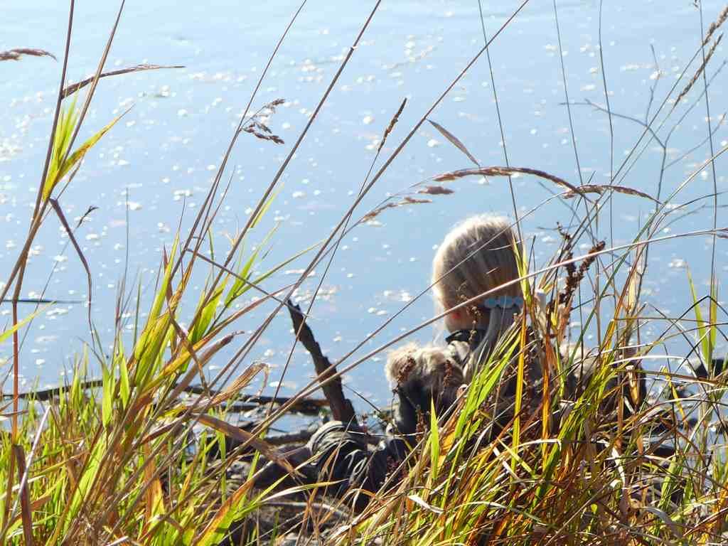 Mini träumt am Ufer der Weser.
