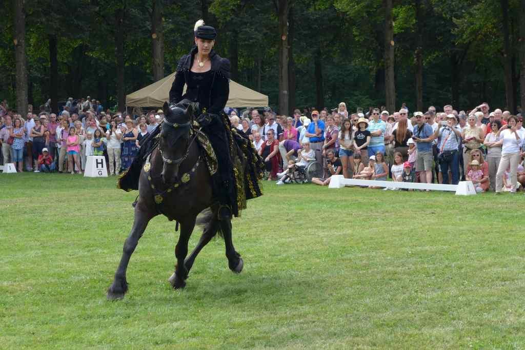 Einzelne Reiterin im schwarz-goldenen Barockkostüm auf einem schwarzen Pferd zeigt rasant ihre Künste.