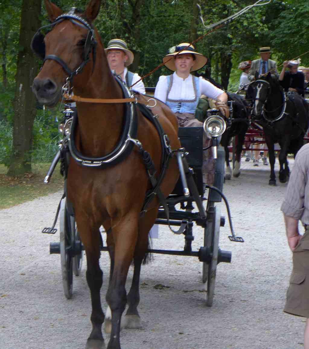 Zwei Kutschen mit Kostümierten fahren auf dich zu. Schlosspark Schleißheim.