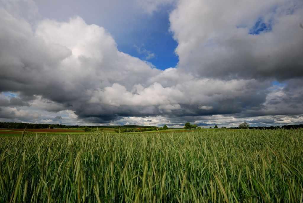 Blauer Himmel mit tiefhängenden Wolken verhangen im Vordergrund ein grünes Feld - wunderbare Dramatik im Odenwald!
