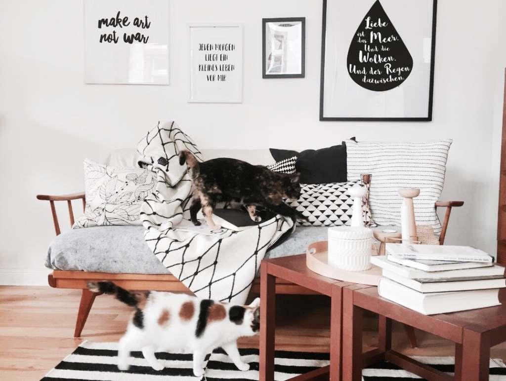Katzen, Bücher, Sofa - Rezept für einen perfekten Sonntag. Foto: Kea von Garnier.
