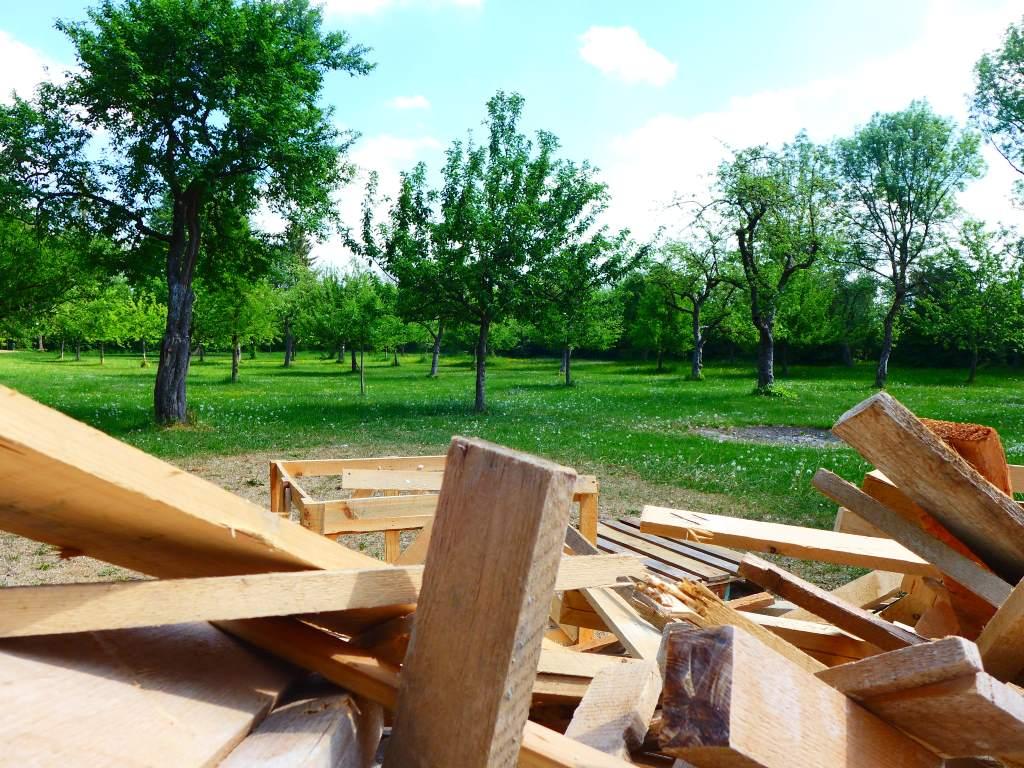 Palettenholz im Vordergrund, dahinter grüne Obstwiese im Sonnenschein. Foto steht symbolisch für DSGVO-konformes fotografieren. #12von12