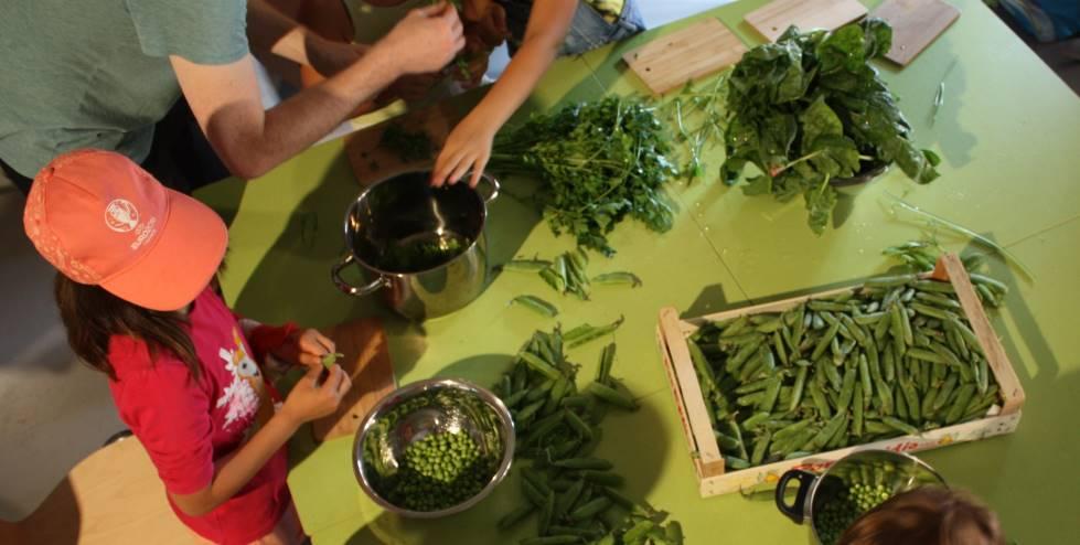 Kinder puhlen Bohnen am Tisch aus fürs Kochen nach mittelalterlichem Rezept auf der Cadolzburg. Blogparade #SchlossGenuss