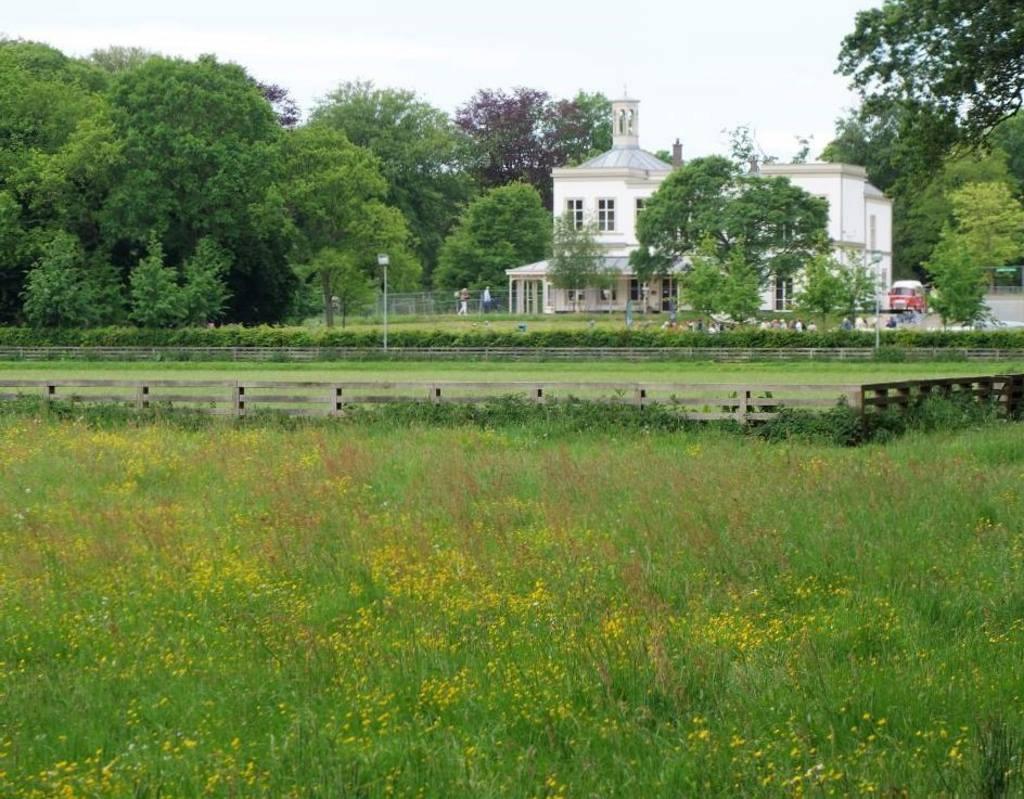Ockenburg - Park