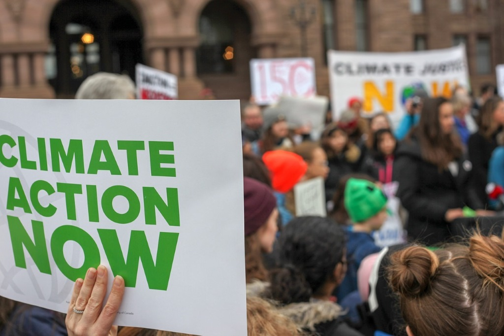 #FridaysForFuture, public domain via Pixabay. https://pixabay.com/de/photos/climate-action-fridaysforfuture-4150536/