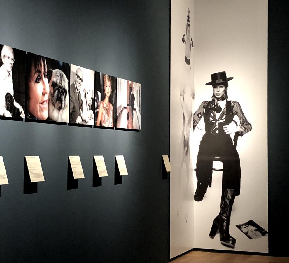 BloggerWalk #BNMArtDogs im Bayerischen Nationalmuseum in München: 7. Februar 2020, ab 18:00