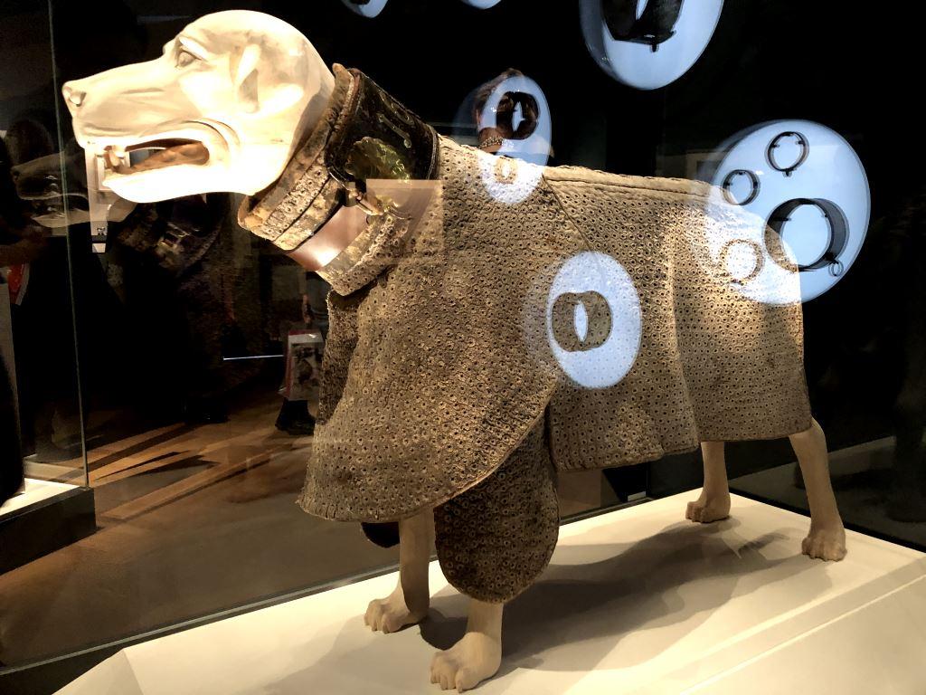 """Hund mit Textilpanzer fuer Jagdhunde mit schutzhalsband in der Ausstellung """"Treue Freunde. Hunde und Menschen"""" im Bayerischen Nationalmuseum. Was es damit auf sich hat, verraten wir beim BloggerWalk #BNMArtDogs."""
